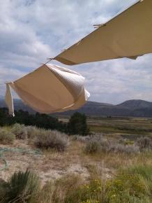 FlyingSheets