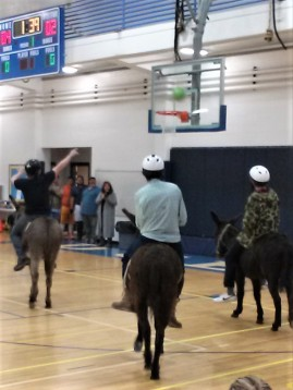 DonkeyBasketball3
