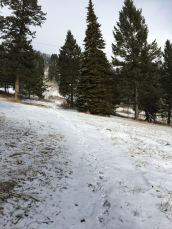 JH_snowytrail