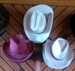 Hats_cropped