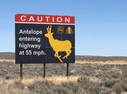 AntelopeSign