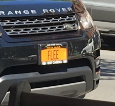 "New York license plate reading ""FLEE"""